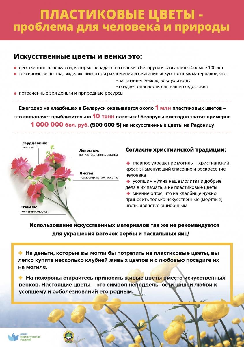 Инфографика Ecoidea.by